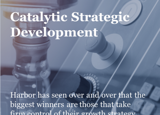 GS_Cover_Catalytic Strategic Development