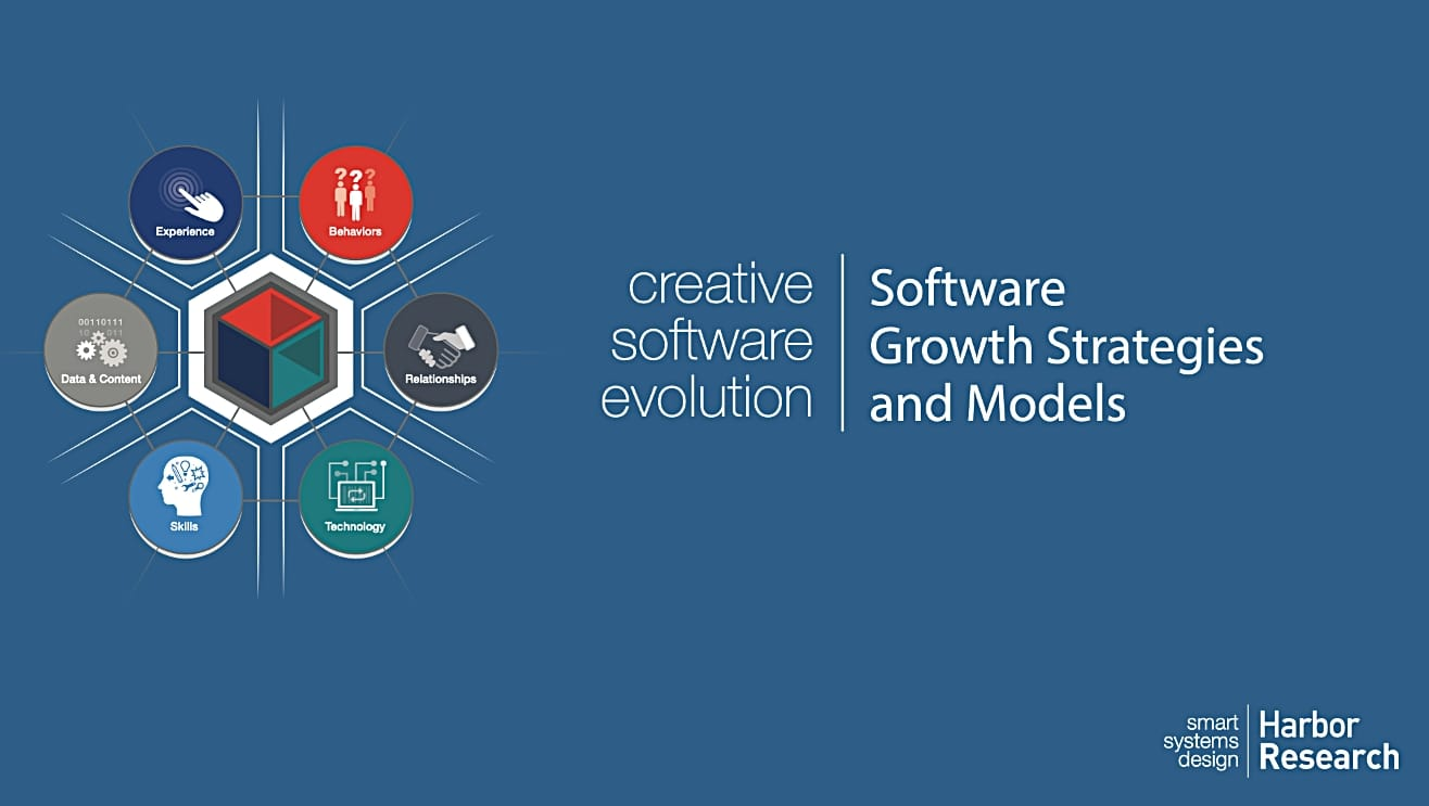 Software Growth Strategies and Models cover
