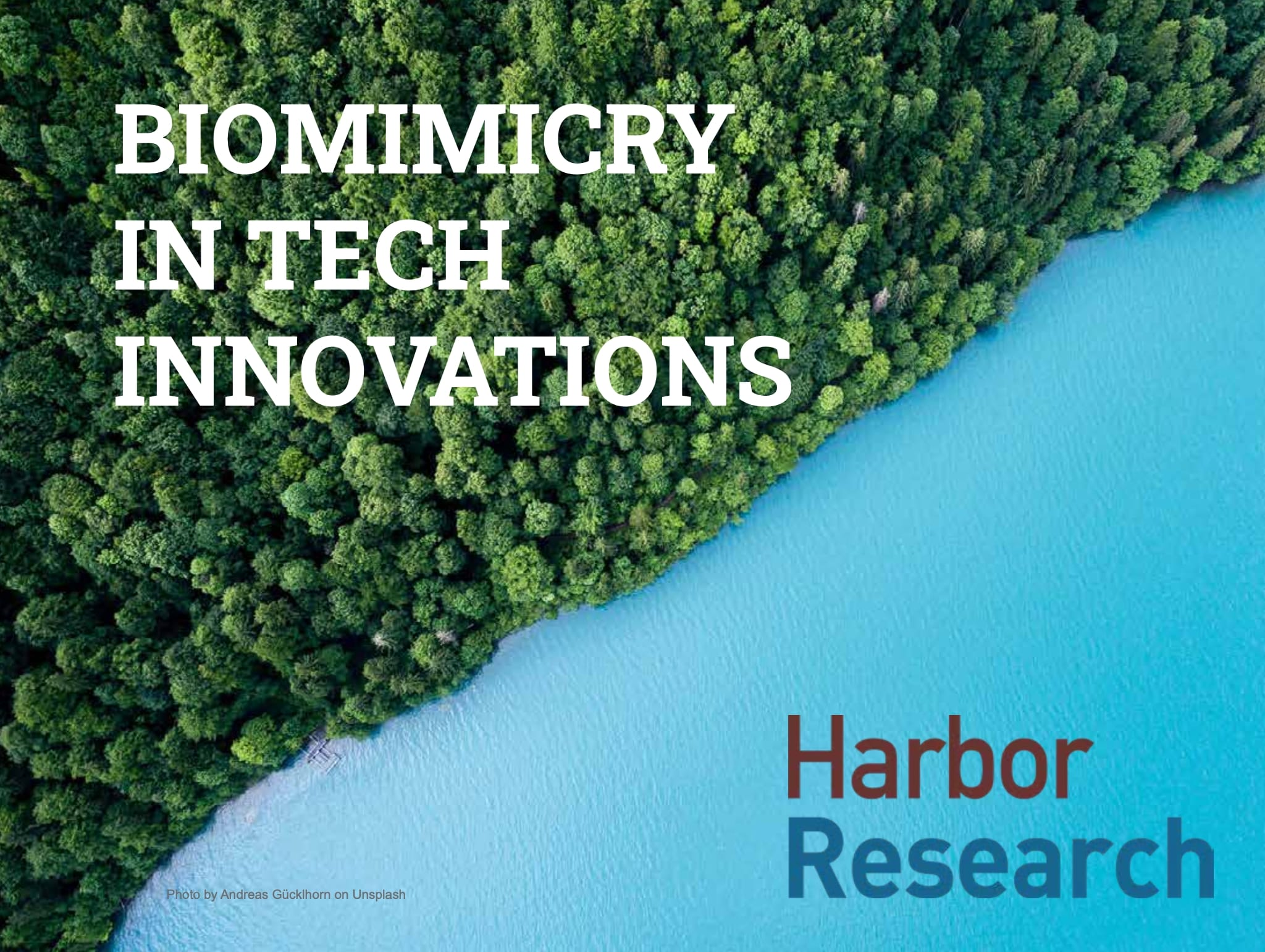 Biomimicry in Tech Innovations cover